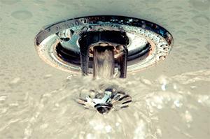 Фото - спринклерная система
